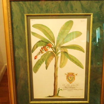 Frame $15.00 but what tree and what is the print?