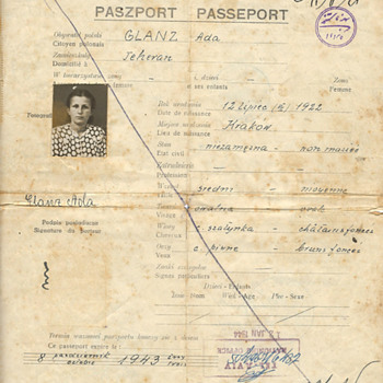Amazing WW2 refugee passport  - Paper