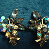 Clip On Earrings-Beaujewels