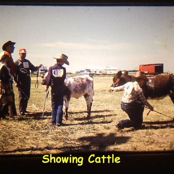 History Captured in Photos..........Small Rural Agricultural Fair ( 1974 ) Post Number # 3 - Photographs