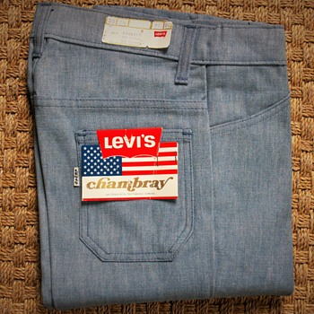 Do you know this model ? Levi's Chambray -Big E
