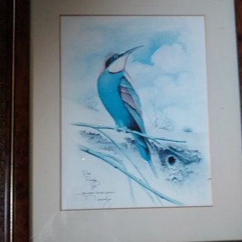 "D.Doody Wildlife artist signed Painting ""Bee-eater"" 87 framed under glass."