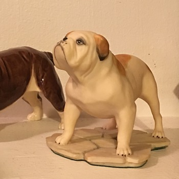 Aynsley English bulldog