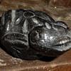 Strange Stone Carved Frog