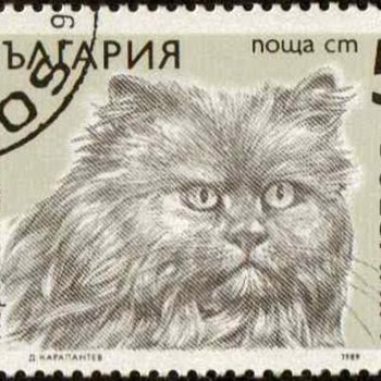 "1989 - Bulgaria ""Cats"" Postage Stamps"
