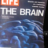 The Brain -- Life Magazine 1971