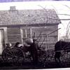 A FEW FAVORITE FARM PHOTOS-SAME FAMILY  **MORE PHOTOS ADDED