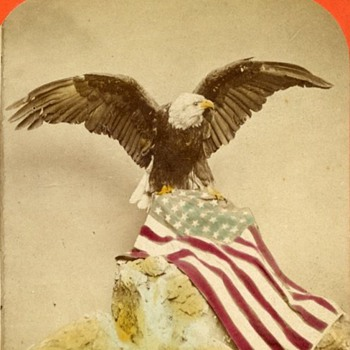 Patriotic Eagle &amp; Flag Hand Tinted Stereoview - early 1870s