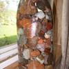 Mason Ball Jar