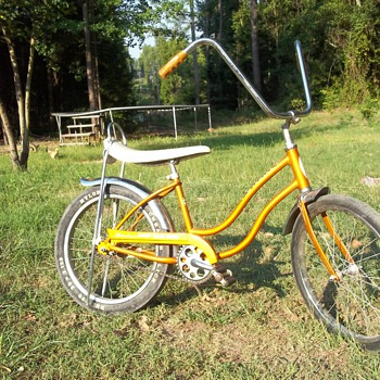 1967 Schwinn Stingray Slick Chick I found in an old shed - Sporting Goods