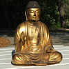 Wooden Buddha