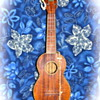  Early 1930&#039;s Kamaka &quot;Special Concert Size&quot; Ukulele