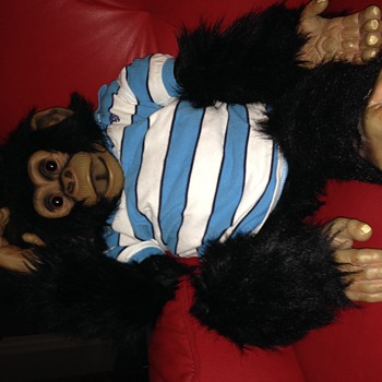 Chimp puppet a copy of axtell - Animals
