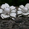 Sarah Coventry Earrings - New Summer Magic