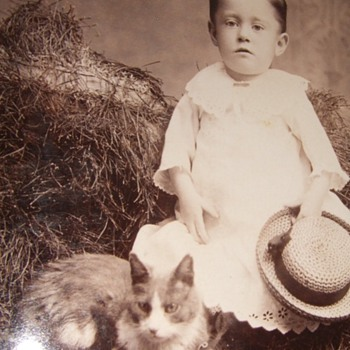 Cabinet card of boy in dress with a cat 