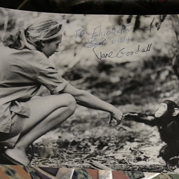 Signed Photo of Jane Goodall with Baby Gorilla