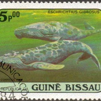 "1984 - Guinea-Bissau ""Whales"" Postage Stamps"