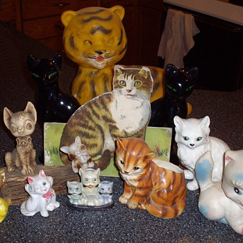 Latest feline finds:)