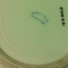 18KT gold dishware