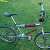 1981 REDLINE PROLINE bmx racing bike