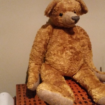 Does anyone know more about this old teddy bear? - Dolls