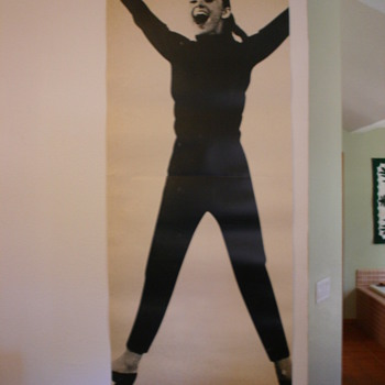 Audrey Hepburn FunnyFace  poster