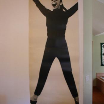 Audrey Hepburn FunnyFace  poster - Movies