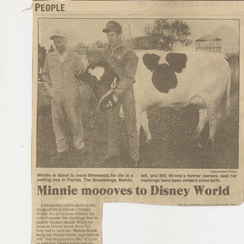 Minnie Moooves to Disney World - Paper