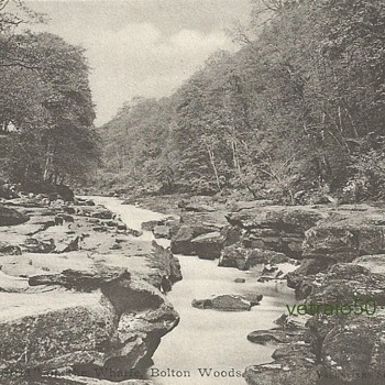 "'THE STRID ON THE WHARFE""  - BOLTON WOODS - Postcards"
