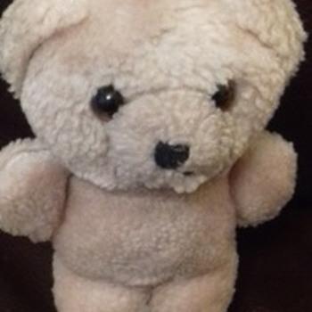 hand size teddy bear