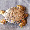 "Turtle Brooch Bronze/Silver signed ""Courtney"""