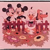 "4"" x 5"" Disney Film Positive"