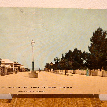 LONELINESS IS  MUDGEE LOOKING EAST - Postcards