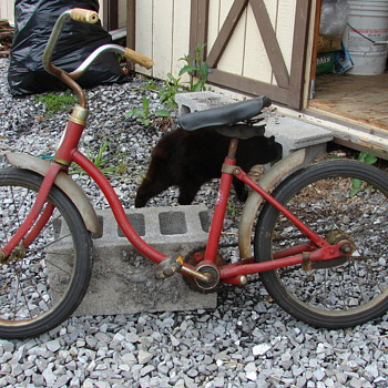 The smallest Schwinn I have ever seen... - Outdoor Sports