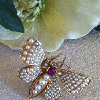 Butterfly brooch dated 1898! - Fine Jewelry