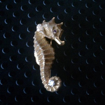 A lovely Seahorse