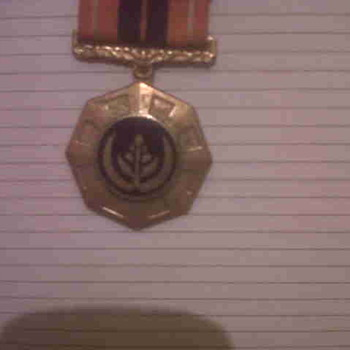 Military Badge...South African?