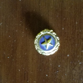 Gold Star family pin