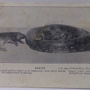 1898 Postcard? - Postcards