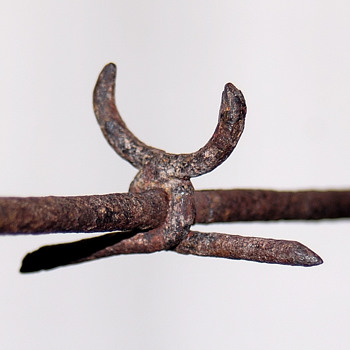 Rare Barbed Wire