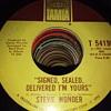 Mr Stevie Wonder....