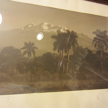 Old Sepia Photograph Palm Springs ? Signed