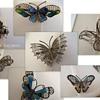 Scary  Butterflies!!!