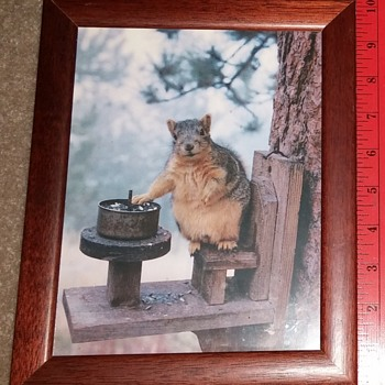 Squirrel Print Unsigned