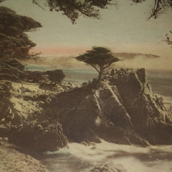 Old Framed Scenic Photo of Point Lobos, Carmel, CA