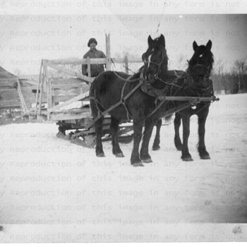 Winter work 1947 - Photographs