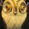 Bubo is here!!!