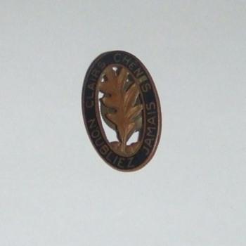 WW2 6th EN Battalion screw back DUI