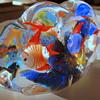My old Murano Fish Aquarium haha so much like Ricks right?
