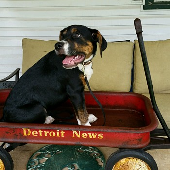 Vintage Detroit News Paper Boy Wagon